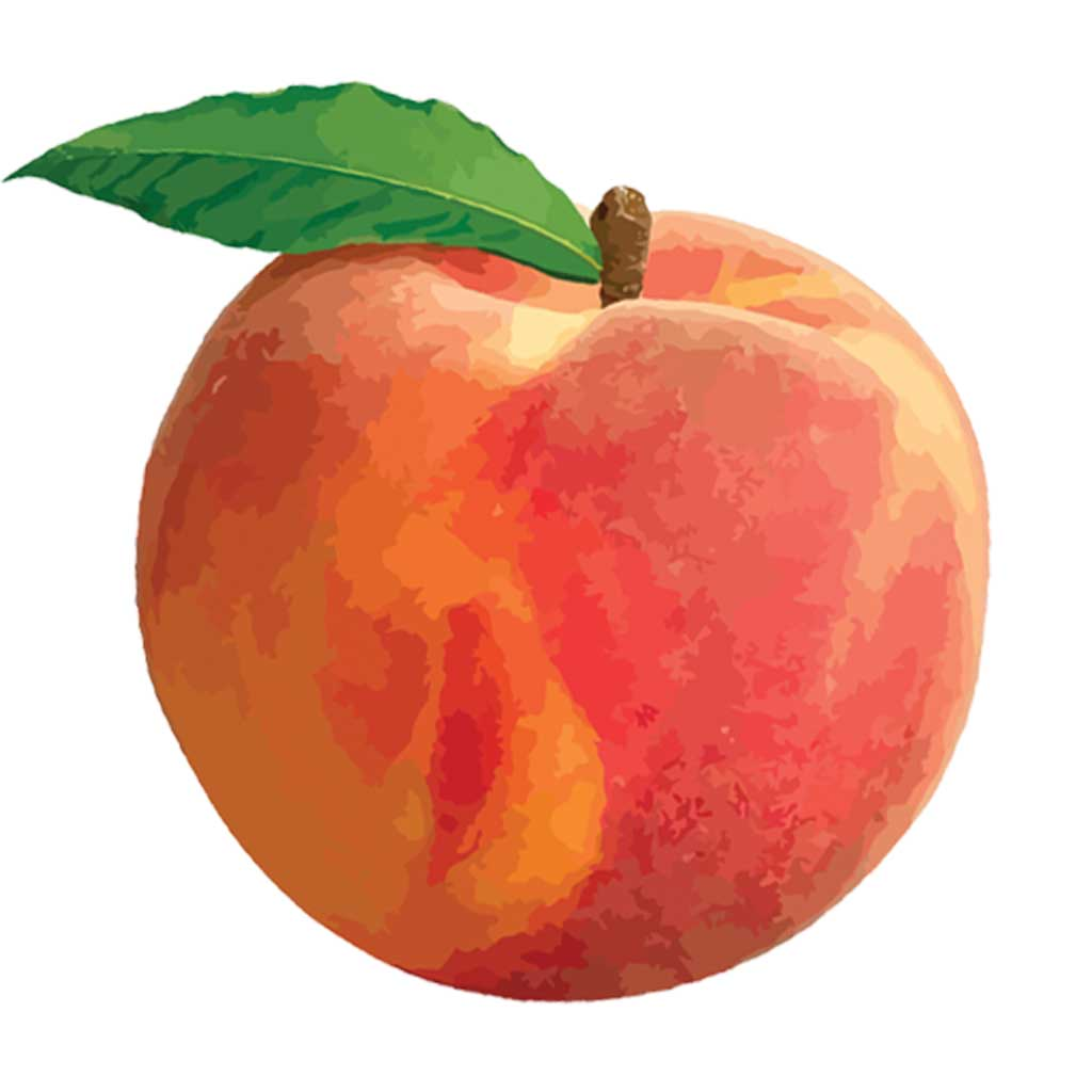 peach-07